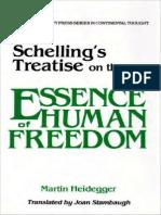 Heidegger, Schelling Commentary