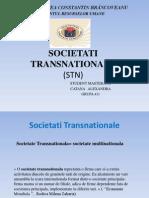 SOCIETATI TRANSNATIONALE