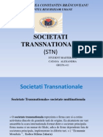 SOCIETATI TRANSNATIONALE