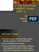 Forest_101.1