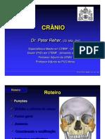 Anatomia do cranio