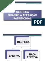 Wilsonaraujo Orcamentopublico Completo 025