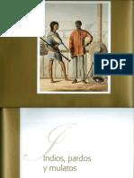 03Jairo Gutiérrez, Indios, pardos y mulatos