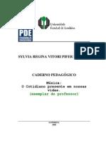FORMAÇÃO MÚSICA DOCENTE