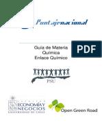 Enlace Quimico Puntaje Nacional