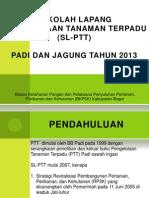 Slptt Padi & Jagung 2013