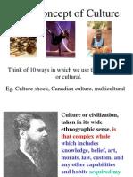 (1)Concept of Culture
