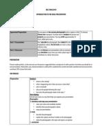 Sl English b Oral Presentation PDF