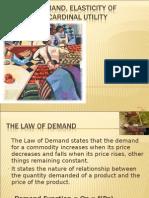 Law of Demand,Demand Elasticty