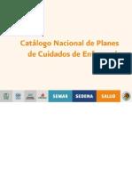 Catálogo Nacional de Planes de cuidado de  Enfermería  Mexico