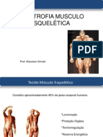 Aula Hipertrofia Muscular
