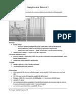 Neoplasmul Bronsic1