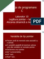 L10 Alocare dinamica