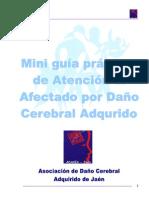 Miniguia Dca (Adacea)
