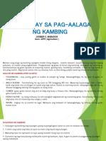 Mga Gabay Sa Pag-Aalaga Ng Kambing