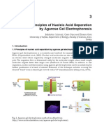 InTech Principles of Nucleic Acid Separation by Agarose Gel Electrophoresis