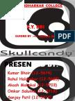 Skull Candy (1)