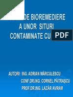 10 Cornel Patrascu UPG