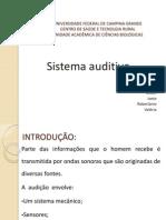 4 Sistema Auditivo