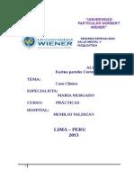 Proceso de Enfermeria Del Hospital Hemilio Valdizan 1