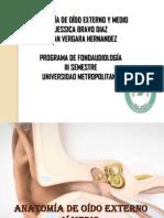 trabajoindependienteanatomofisiologiadeloidoterminado-120524181509-phpapp01