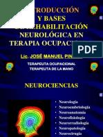 Bases NeuroRHB