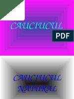 Caucicul