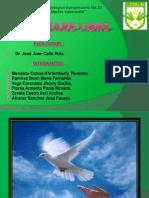 Software Libre y Licencias