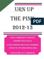 pink night 2012-13 state report