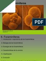 06_Foraminiferos.ppt