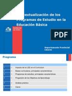 Presentacion Bases Programa Lenguaje Ricardo Villar.pptx