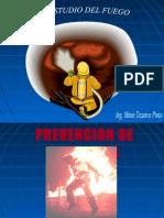 6 Estudio Del Fuego Vid (1)