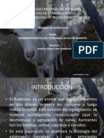 compartimientosdelestmagodelosrumiantes-131107000523-phpapp01