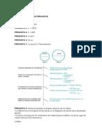 PISA respuestas.doc