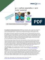 Butterfly Wings Carbon Nanotubes Nanobiocomposite