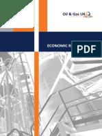 Economic Report 2013