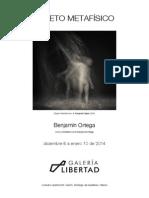 _folleto_SUJETO METAFÍSICO