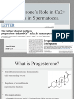 Progesterone's Role in Ca2+ Influx in Spermatozoa