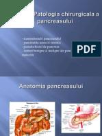 Curs 11 Pancreas