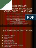 c3- An.ii.Ergoterapia in Reabilitarea Sechelelor Neurologice Vasculare