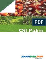 NDJ OilPlam Eng Booklet 130311F