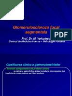 23521040 Glomeruloscleroza Focal Segmentala