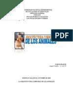 LA ARQUITECTURA CORPORAL DE LOS ANIMALES (ÁNGELA-UNELLEZ)