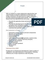 Punjab-policies.pdf