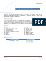 Manual Excel 2010