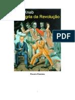 Alegria da Revolução - Ken Knab