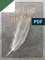 La Luz Del Ser - Gilbert Schultz