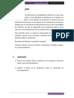 informe de deterioro carne polloo  y leche.docx