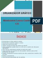 ORGANIZADOR GRÁFICO