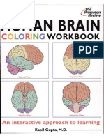human brain coloring workbook - Anatomy And Physiology Coloring Book Pdf
